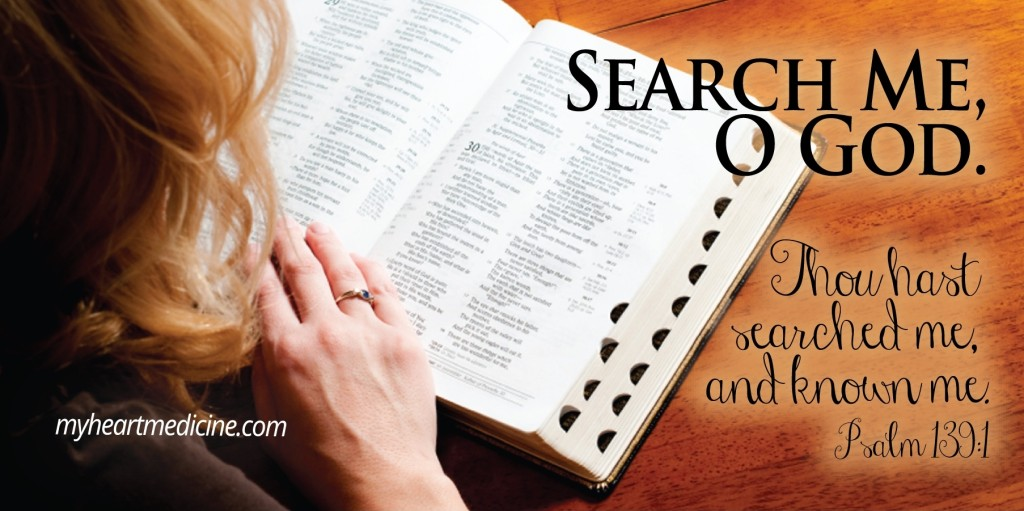 searchme (2)