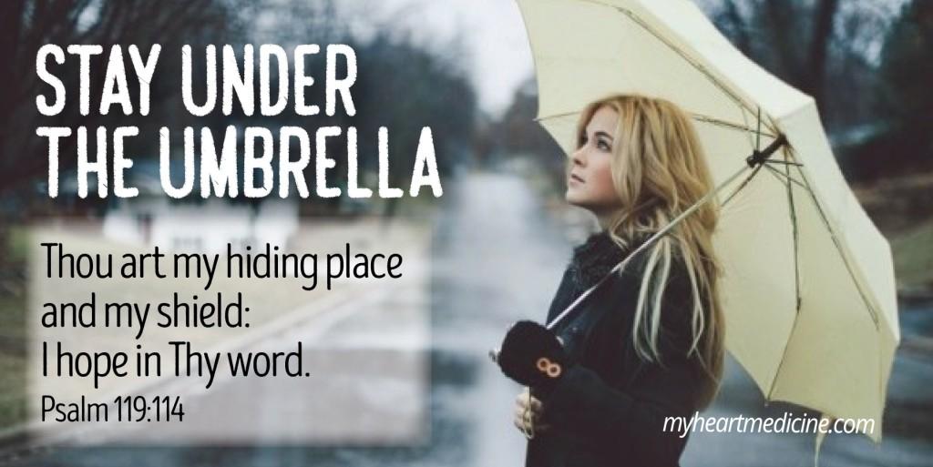 under the umbrella (2)